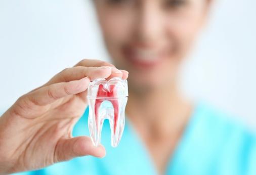 Responsibility of the Dental Surgeon