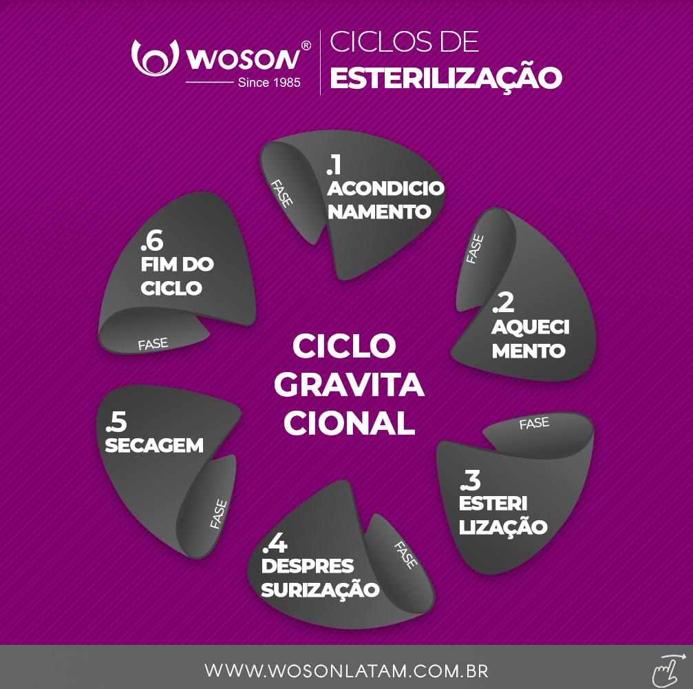 Ciclo de Esterilização Classe N